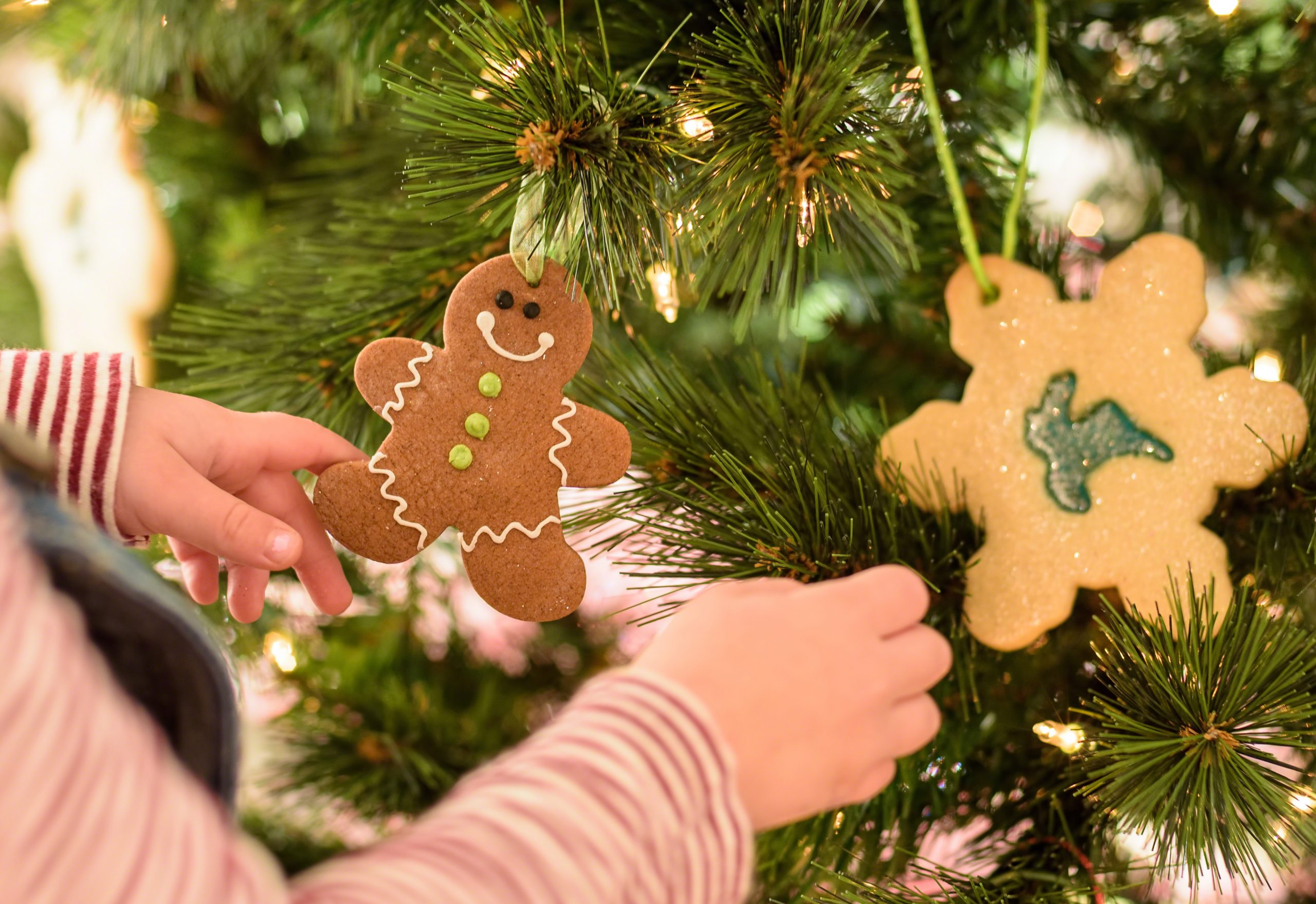 Young child hanging gingerbread man